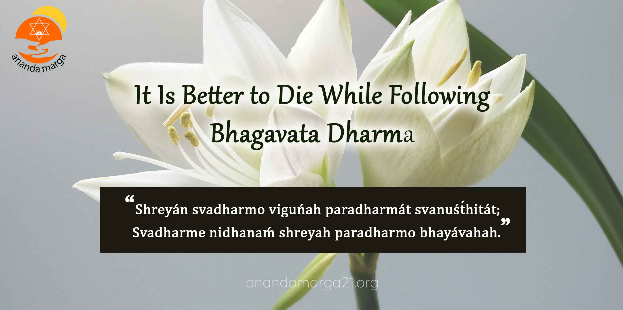 Anandamarga-Better-to-Die