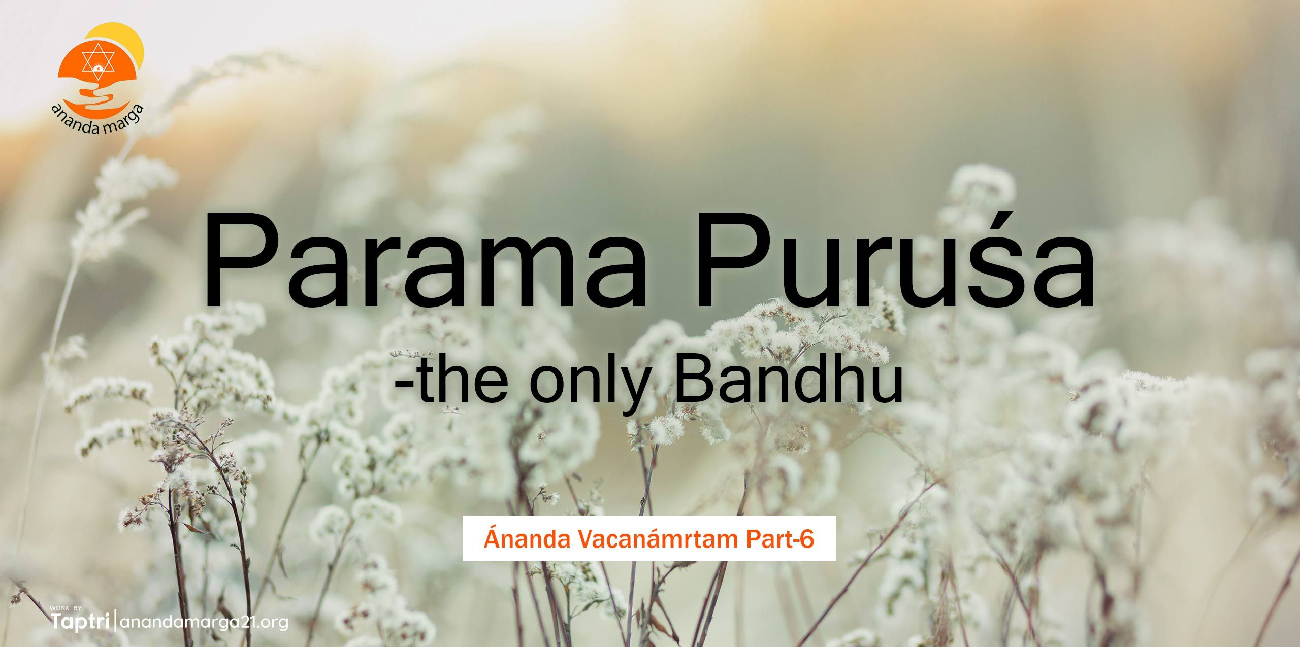 Parama-Purusa-the-only-Bandhu-Ananda-Vacanamrtm-06-anandamarga